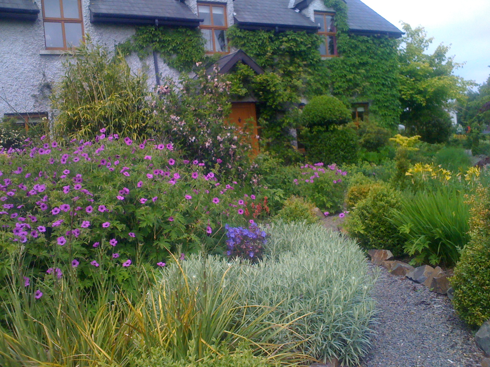 Kilmurry Nursery Garden by Ciaran Burke