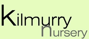 Kilmurry Nursery, Gorey, co Wexford, Ireland