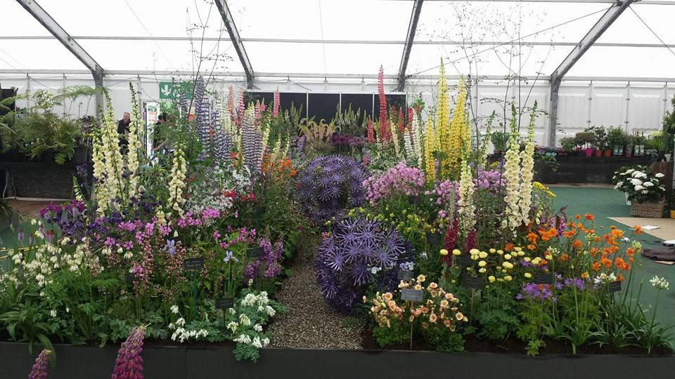 Bloom display 16