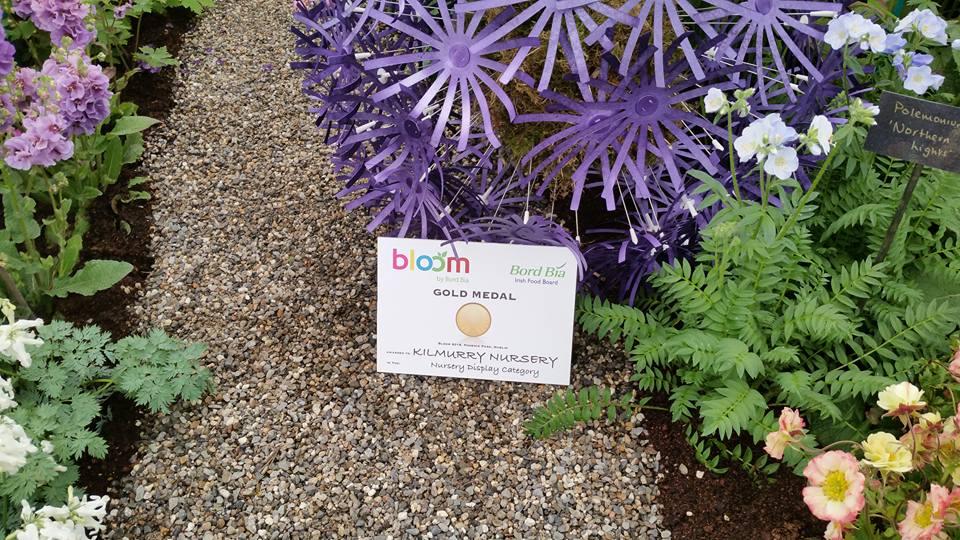 Bloom medal 16